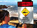 sharkwarning-ap203