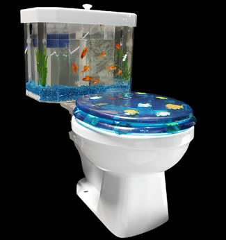 Company introduces fish n flush part toilet part fish tank an