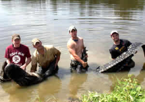 lufkin record alligator team
