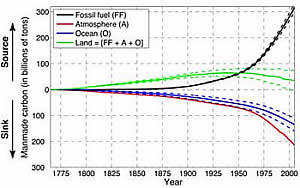 Carbon released fossil fuel burning