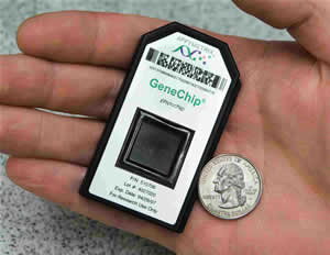 gene chip dna array PhyloChip