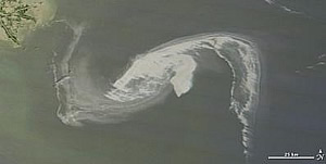 gulf mexico oil spill BP