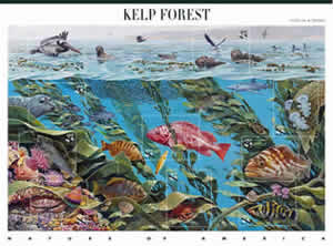 kelp forest stamp