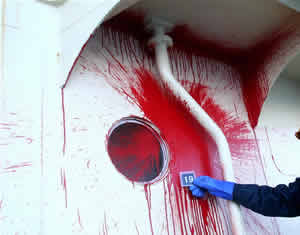 sea shepherd paint attack