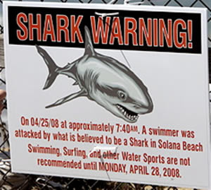 solana beach shark attack warning sign