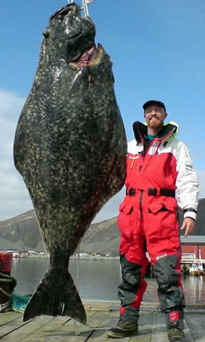 soren beck halibut norway