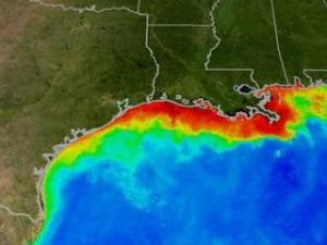 texas louisiana dead zone
