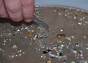 plactic debris collection ocean