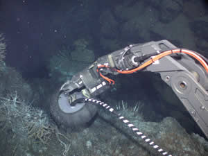 robotic arm ROV Jason II