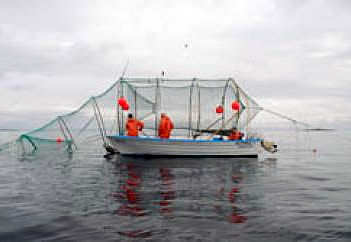 sea proof net Sweden